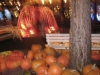 halloween-20081026981