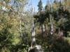 wanderung_diemtigtal-seebergsee-20091007_6025