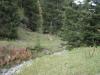 wanderung_diemtigtal-seebergsee-20091007_6107