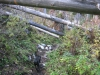 wanderung_diemtigtal-seebergsee-20091007_6121
