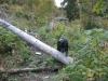 wanderung_diemtigtal-seebergsee-20091007_6126