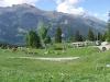 Wanderung-Grindelwald_04062011_236