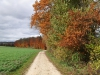 wanderung-leibstadt-laufenburg_04112010_089