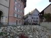 wanderung-leibstadt-laufenburg_04112010_151