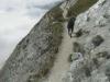 wanderung-oberalppass-tomasee_30072009_3859