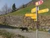 weg-der-schweiz_fluelen-brunnen_333