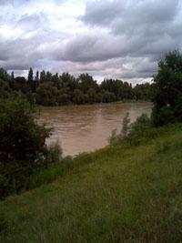 Alt Rhein mit Hochwasser