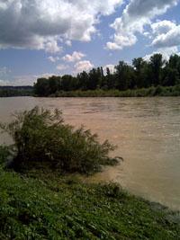 Nicht der Mississippi, sondern der Rhein bei Hochwasser bei Bad Bellingen